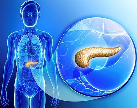 Анализ крови при заболевании поджелудочной железы