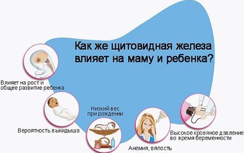 Значение анализа на гормоны щитовидки у ребенка и у женщин в период беременности