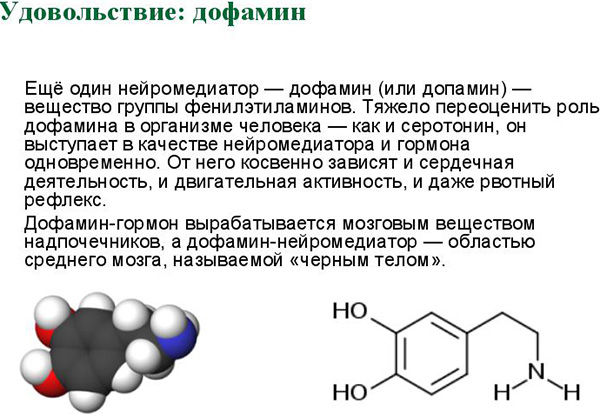 Гормон Дофамин: что такое, где содержится и на что влияет, как повысить уровень в организме
