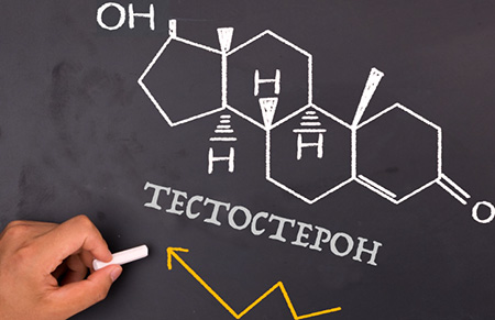 Повышенный тестостерон у мужчин и женщин: причины, как снизить и ...